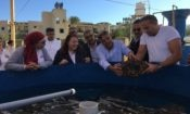 USAID Deputy Mission Director Rebecca Latorraca visits a giant clam farm in Marsa Alam with renowned marine biologist Dr. Mahmoud Hanafy and HEPCA representatives. Restoring the native giant clam population is critical to coral reef